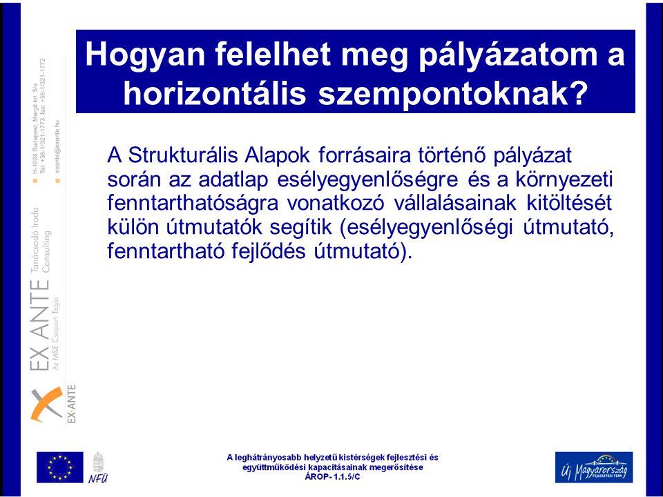 Hogyan felelhet meg pályázatom a horizontális szempontoknak? A Strukturális Alapok forrásaira történő pályázat során az adatlap esélyegyenlőségre és a