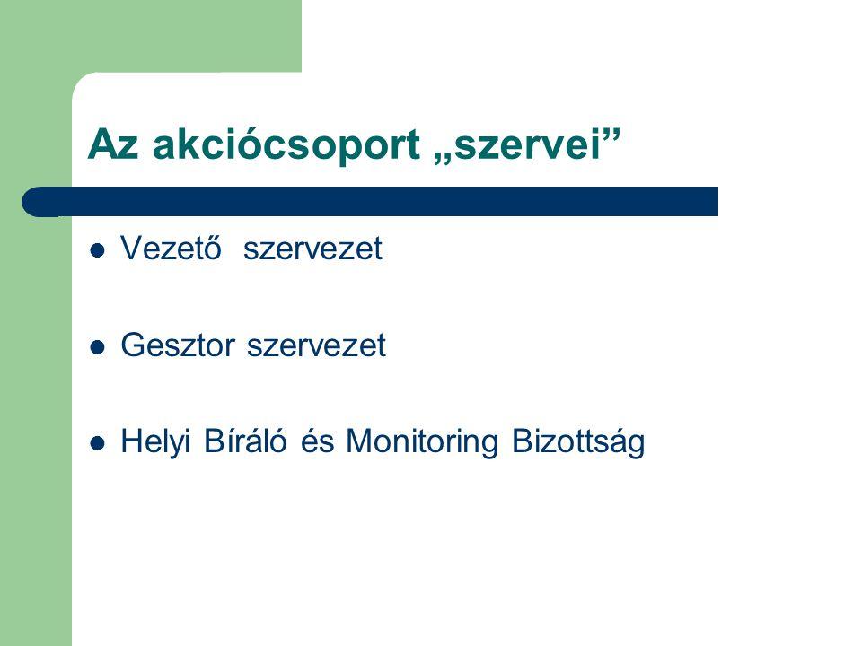 """Az akciócsoport """"szervei  Vezető szervezet  Gesztor szervezet  Helyi Bíráló és Monitoring Bizottság"""