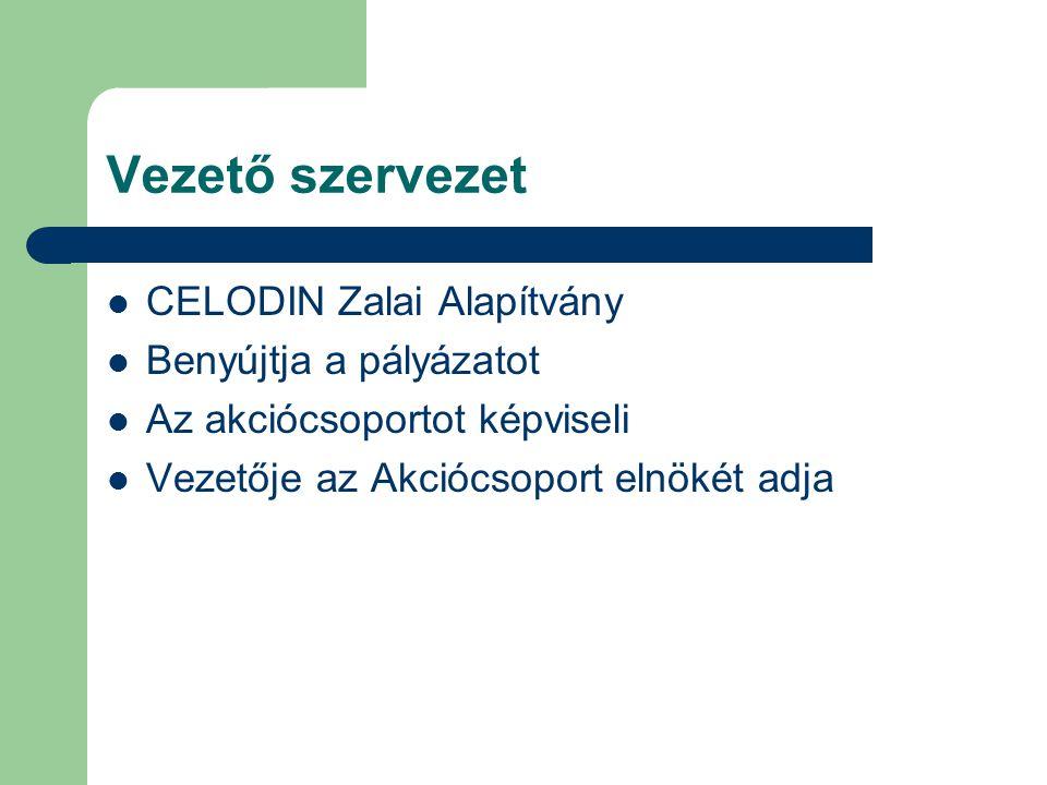 Vezető szervezet  CELODIN Zalai Alapítvány  Benyújtja a pályázatot  Az akciócsoportot képviseli  Vezetője az Akciócsoport elnökét adja