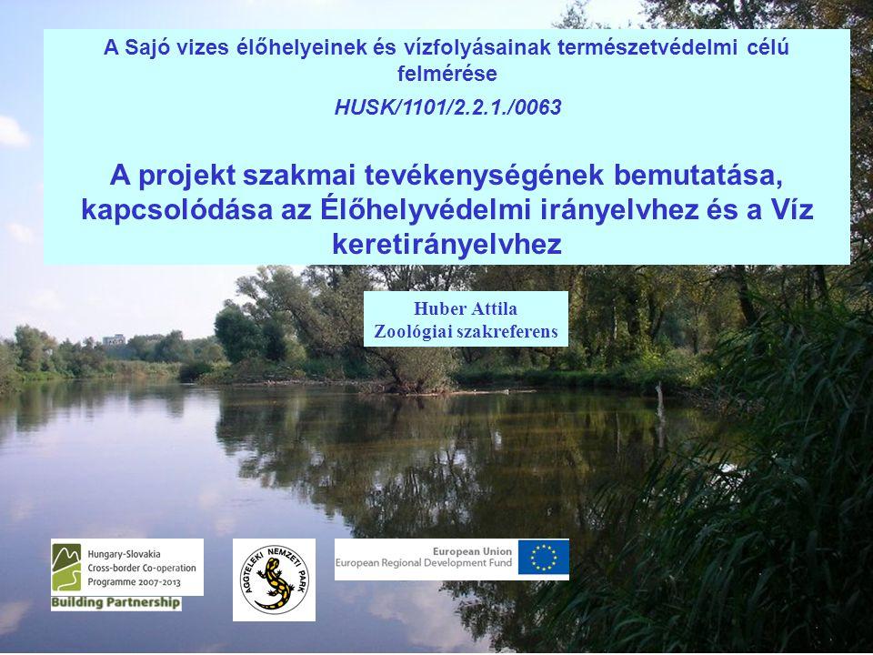Huber Attila Zoológiai szakreferens A Sajó vizes élőhelyeinek és vízfolyásainak természetvédelmi célú felmérése HUSK/1101/2.2.1./0063 A projekt szakmai tevékenységének bemutatása, kapcsolódása az Élőhelyvédelmi irányelvhez és a Víz keretirányelvhez