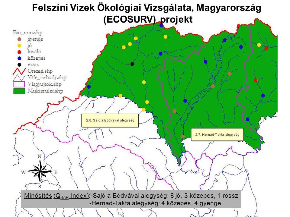 Felszíni Vizek Ökológiai Vizsgálata, Magyarország (ECOSURV) projekt Minősítés (Q BAP index):-Sajó a Bódvával alegység: 8 jó, 3 közepes, 1 rossz -Hernád-Takta alegység: 4 közepes, 4 gyenge