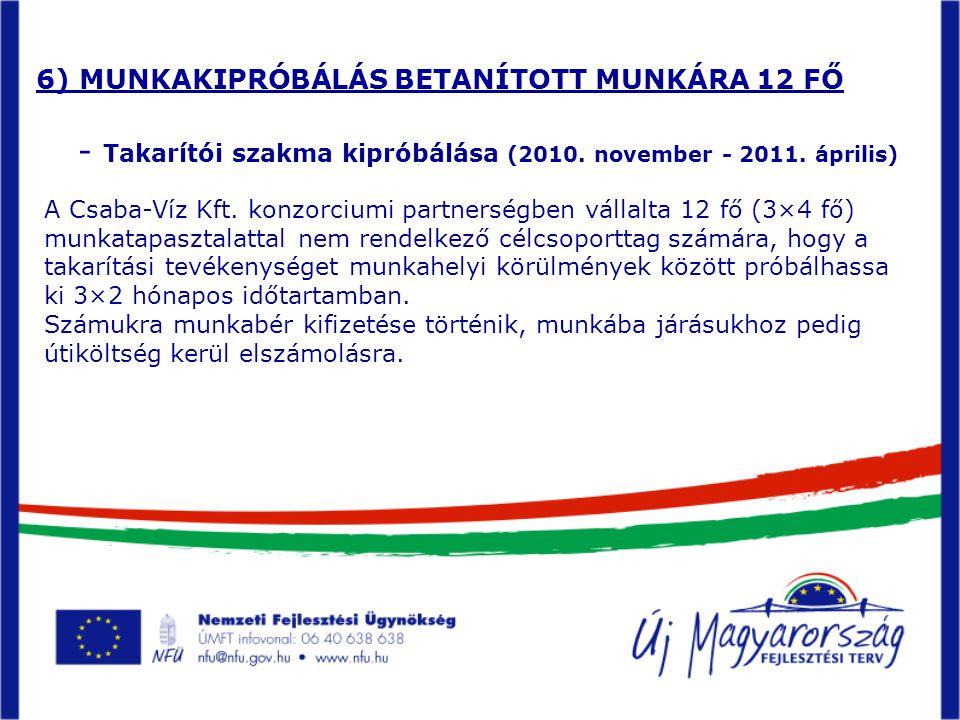 6) MUNKAKIPRÓBÁLÁS BETANÍTOTT MUNKÁRA 12 FŐ - Takarítói szakma kipróbálása (2010.