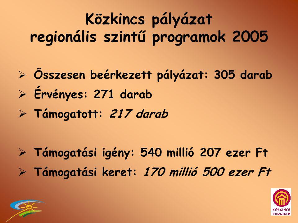 Közkincs pályázat 2005 regionális szintű programok •Kiíró: NKÖM •Lebonyolító: MMI – Regionális Programok Főosztálya - Regionális Koordinációs Irodák Pályázatok bírálata •Regionális Közkincs Bizottságok •KM régió - Szakmai Bizottság •NKÖM - Szakmai Bizottság •Pályázati értesítések - NKÖM