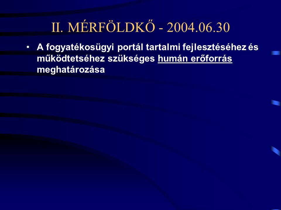 II. MÉRFÖLDKŐ - 2004.06.30 •A fogyatékosügyi portál tartalmi fejlesztéséhez és működtetséhez szükséges humán erőforrás meghatározása