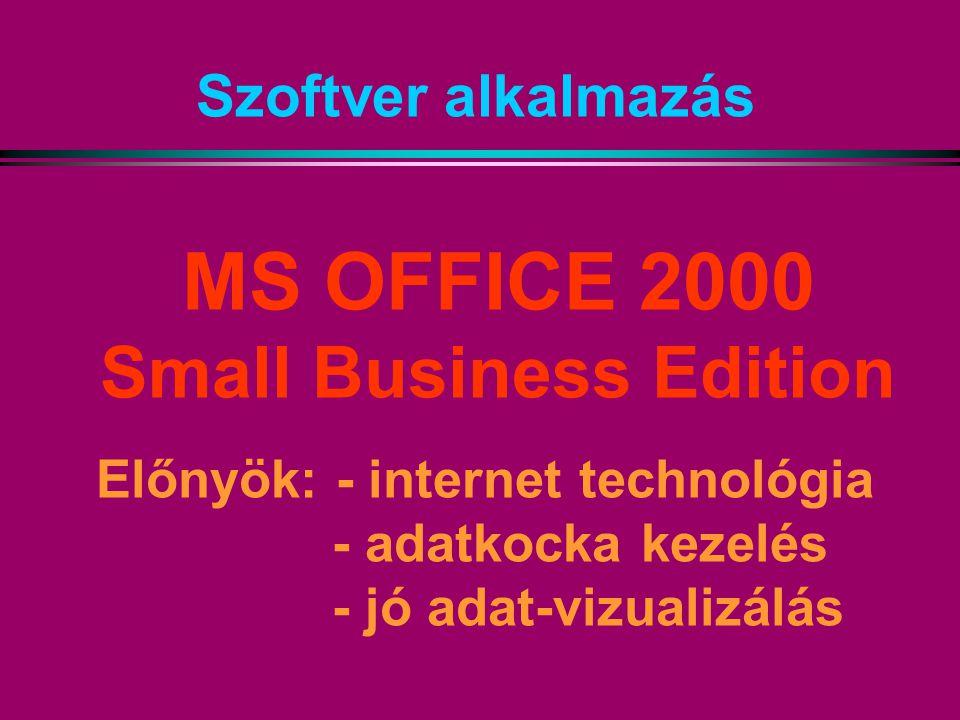 Szoftver alkalmazás MS OFFICE 2000 Small Business Edition Előnyök: - internet technológia - adatkocka kezelés - jó adat-vizualizálás