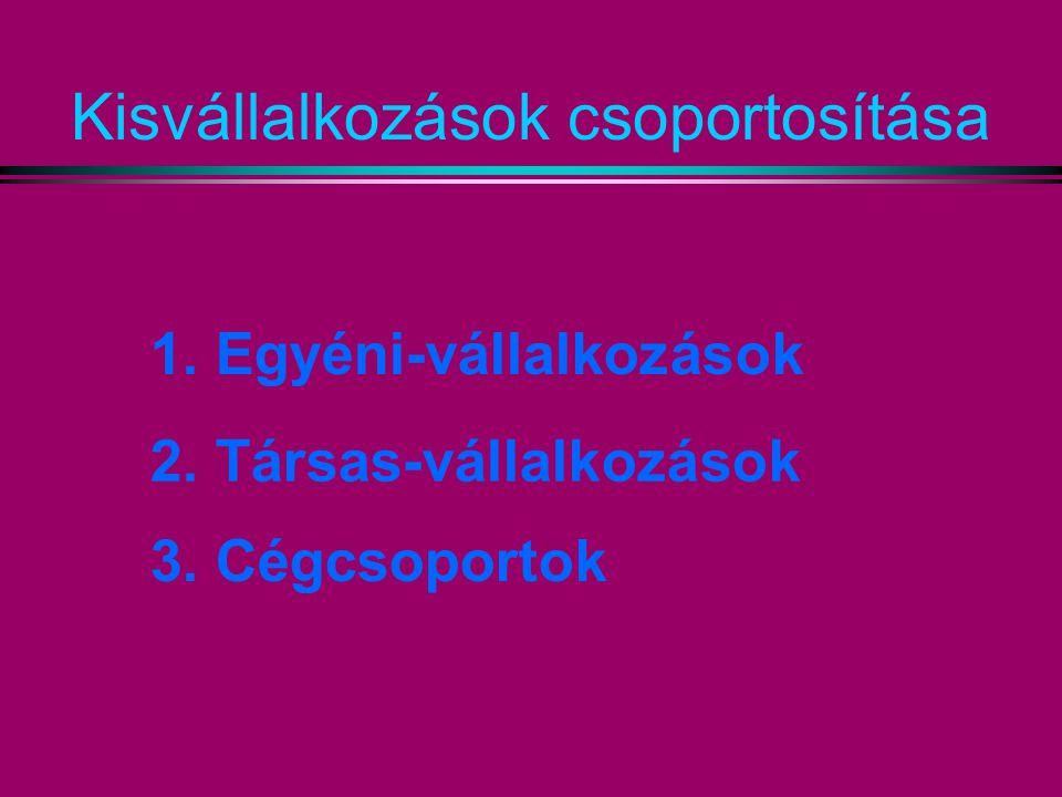 Kisvállalkozások csoportosítása 1. Egyéni-vállalkozások 2. Társas-vállalkozások 3. Cégcsoportok