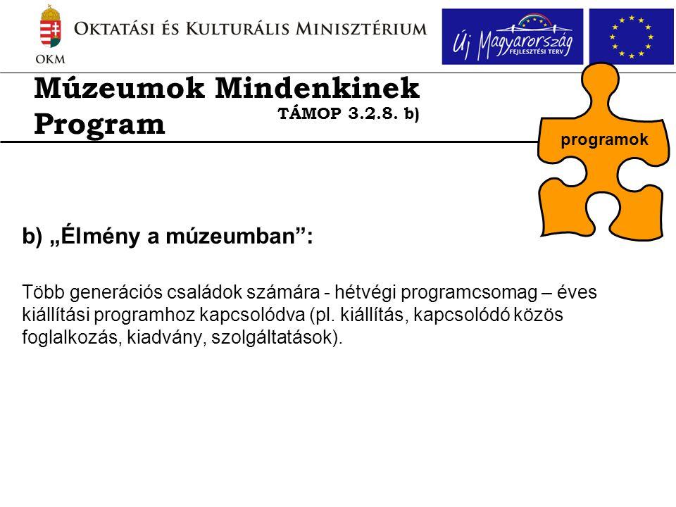 """b) """"Élmény a múzeumban : Több generációs családok számára - hétvégi programcsomag – éves kiállítási programhoz kapcsolódva (pl."""