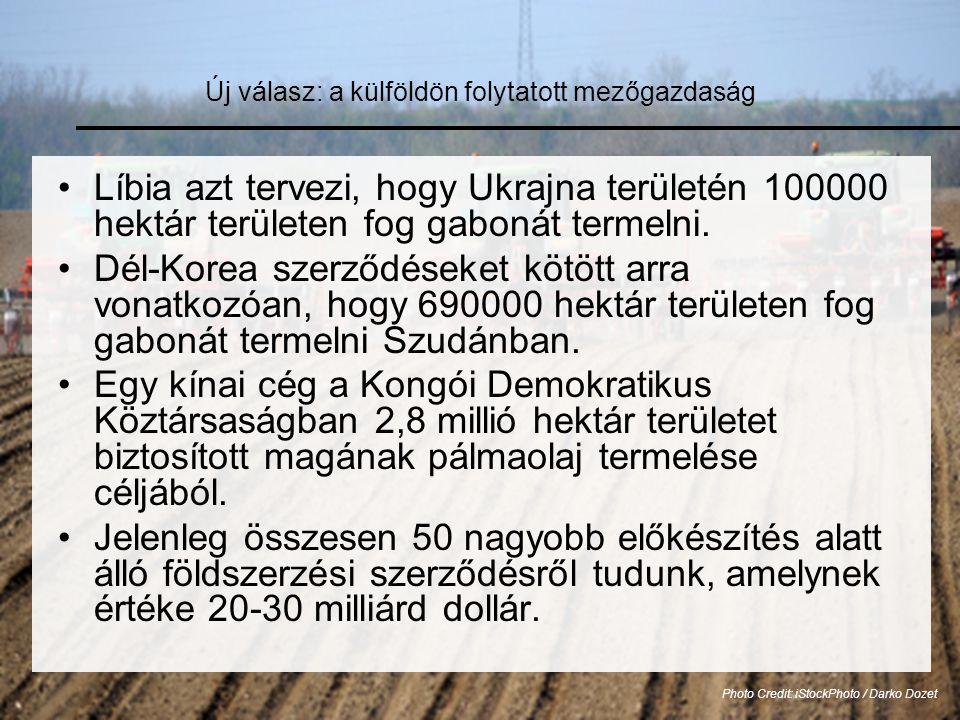Új válasz: a külföldön folytatott mezőgazdaság •Líbia azt tervezi, hogy Ukrajna területén 100000 hektár területen fog gabonát termelni.