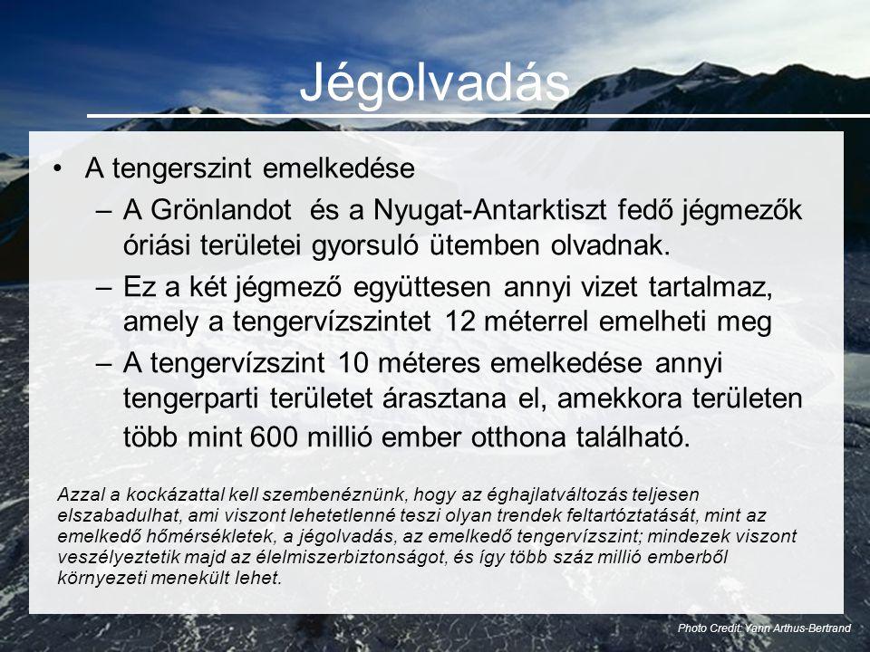 Jégolvadás •A tengerszint emelkedése –A Grönlandot és a Nyugat-Antarktiszt fedő jégmezők óriási területei gyorsuló ütemben olvadnak.