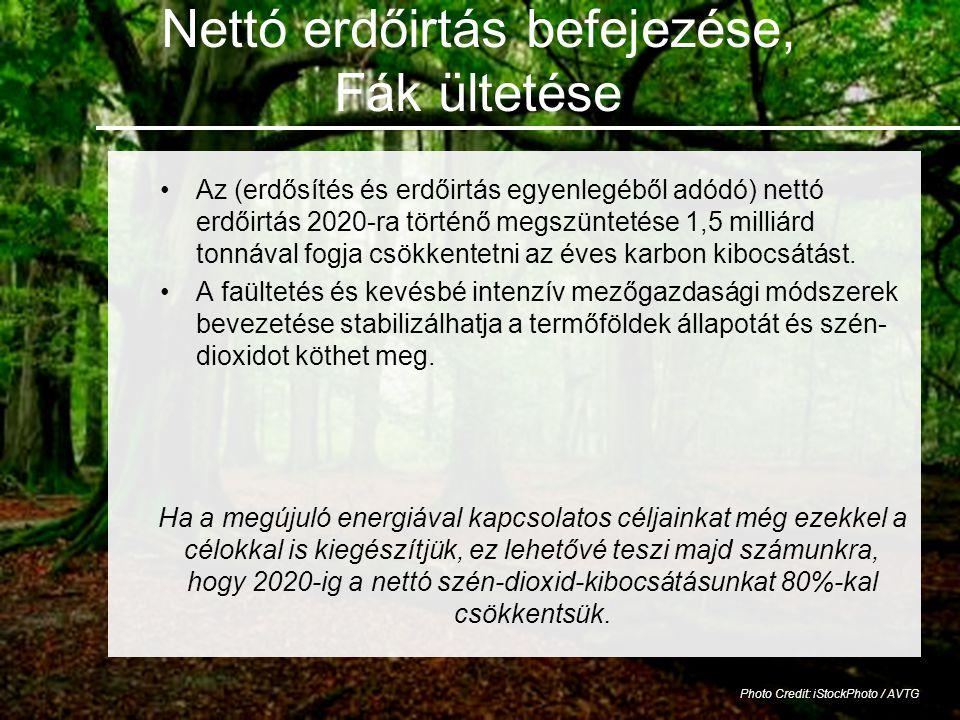 Nettó erdőirtás befejezése, Fák ültetése •Az (erdősítés és erdőirtás egyenlegéből adódó) nettó erdőirtás 2020-ra történő megszüntetése 1,5 milliárd tonnával fogja csökkentetni az éves karbon kibocsátást.