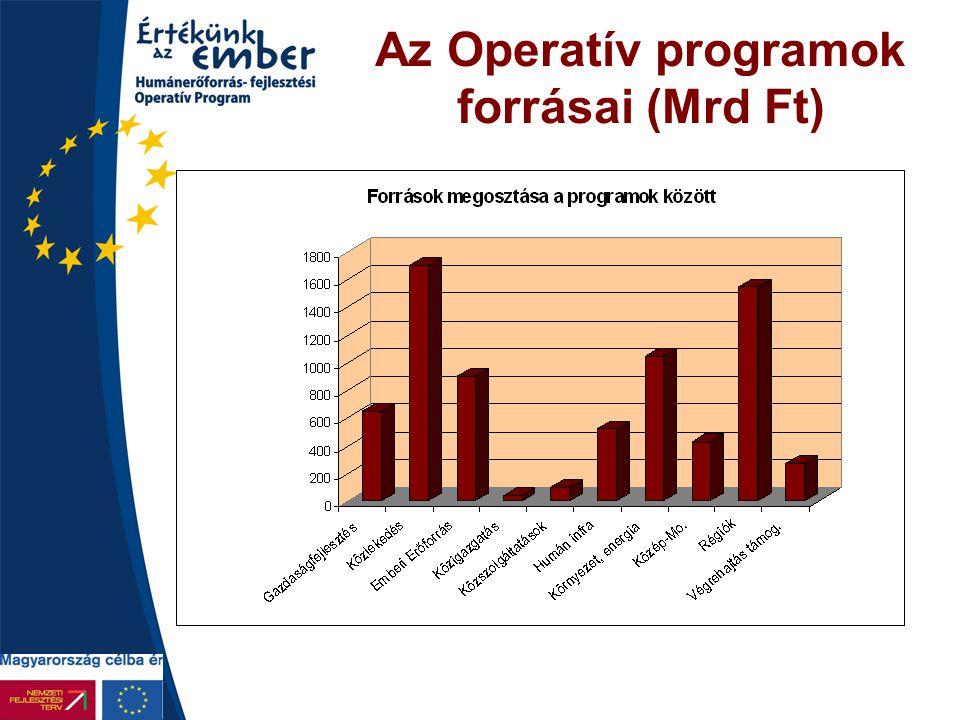 A tervezés menete •Új Magyarország Fejlesztési Terv (2007-2013) –Parlamenti vitanap: október –Elfogadás, hivatalos benyújtás: november •Operatív programok 7 évre, 8 ágazati, 7 regionális –Kormány 1.