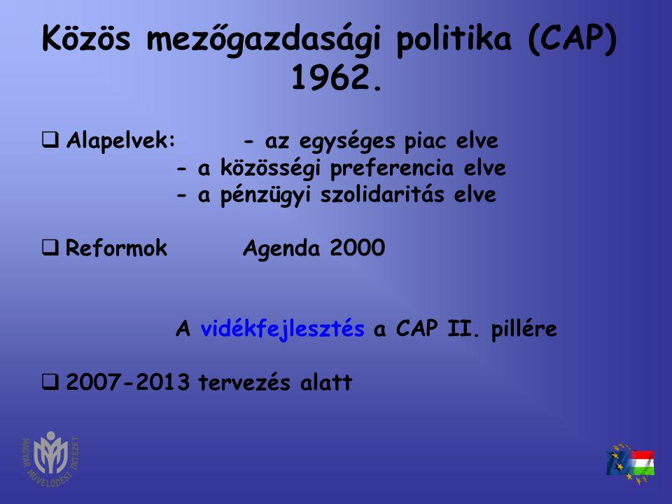 """NFT II. •1076/2004. (VII.22.) Korm. határozat az Európa Terv (2007-2013) kidolgozásának tartalmi és szervezeti kereteiről - """"egészséges társadalom"""" mu"""
