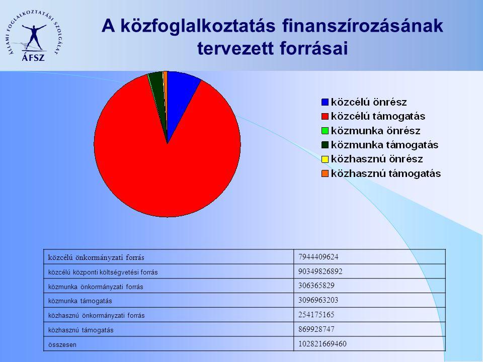 A közfoglalkoztatás finanszírozásának tervezett forrásai közcélú önkormányzati forrás 7944409624 közcélú központi költségvetési forrás 90349826892 közmunka önkormányzati forrás 306365829 közmunka támogatás 3096963203 közhasznú önkormányzati forrás 254175165 közhasznú támogatás 869928747 összesen 102821669460