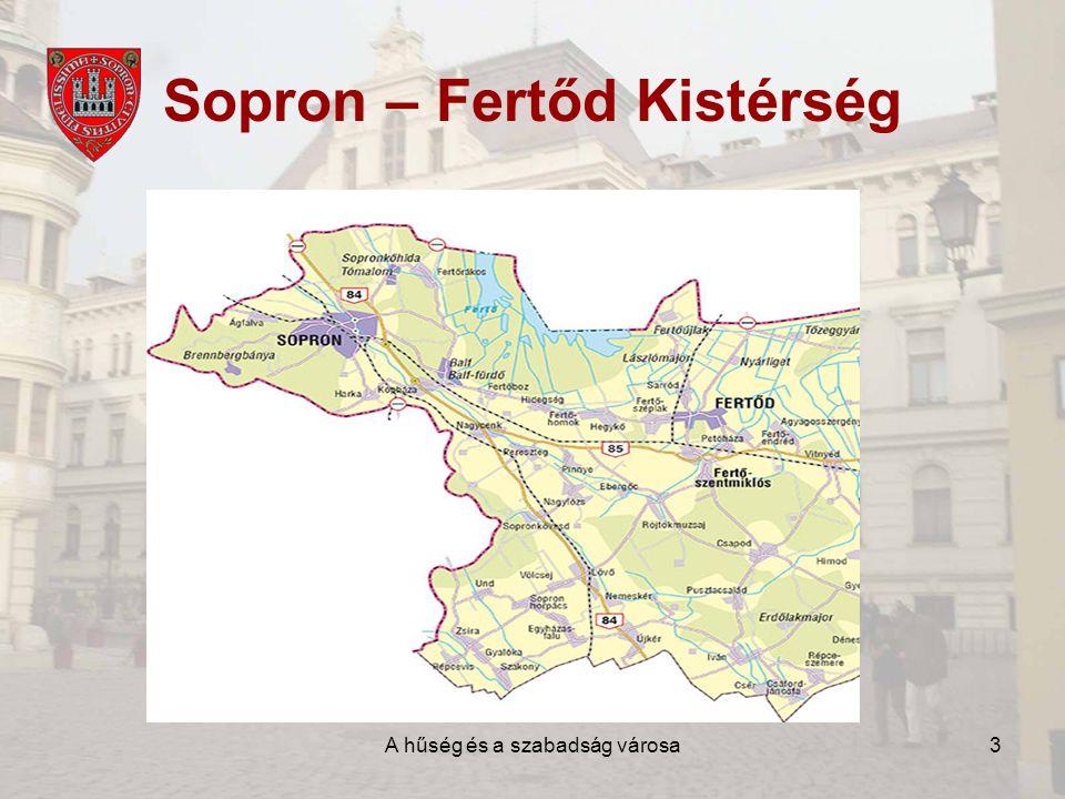 A hűség és a szabadság városa14 Sopron jövőképe •Európai Uniós pályázati források hatékony felhasználása •Sajáterős városi fejlesztések •Szolgáltatási szektor fejlesztése •Termelő-beruházások, helyi vállalkozások számának gyarapítása •Város kulturális hagyományainak megőrzése