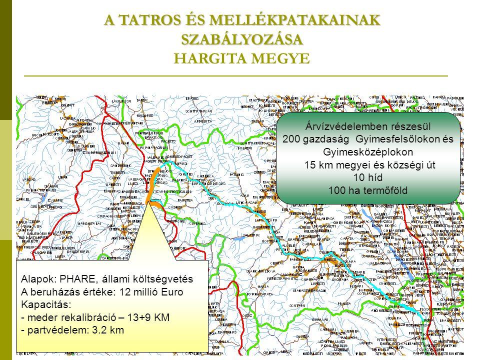 Alapok: PHARE, állami költségvetés A beruházás értéke: 12 millió Euro Kapacitás: - meder rekalibráció – 13+9 KM - partvédelem: 3.2 km A TATROS ÉS MELLÉKPATAKAINAK SZABÁLYOZÁSA HARGITA MEGYE Árvízvédelemben részesül 200 gazdaság Gyimesfelsőlokon és Gyimesközéplokon 15 km megyei és községi út 10 híd 100 ha termőföld