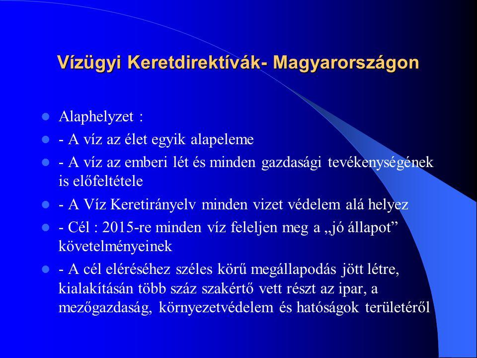 Vízügyi Keretdirektívák- Magyarországon  Alaphelyzet :  - A víz az élet egyik alapeleme  - A víz az emberi lét és minden gazdasági tevékenységének