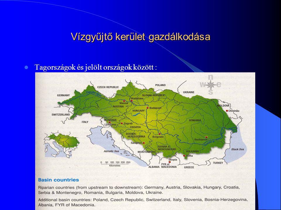 Vízgyűjtő kerület gazdálkodása - 18 nemzetközi vízgyűjtő kerület - A Duna  Illetékes hatóságok - Nemzetközi szervezet : Duna Völgyi Vízügyi Bizottság - Közös vízgazdálkodási terv elkészítése