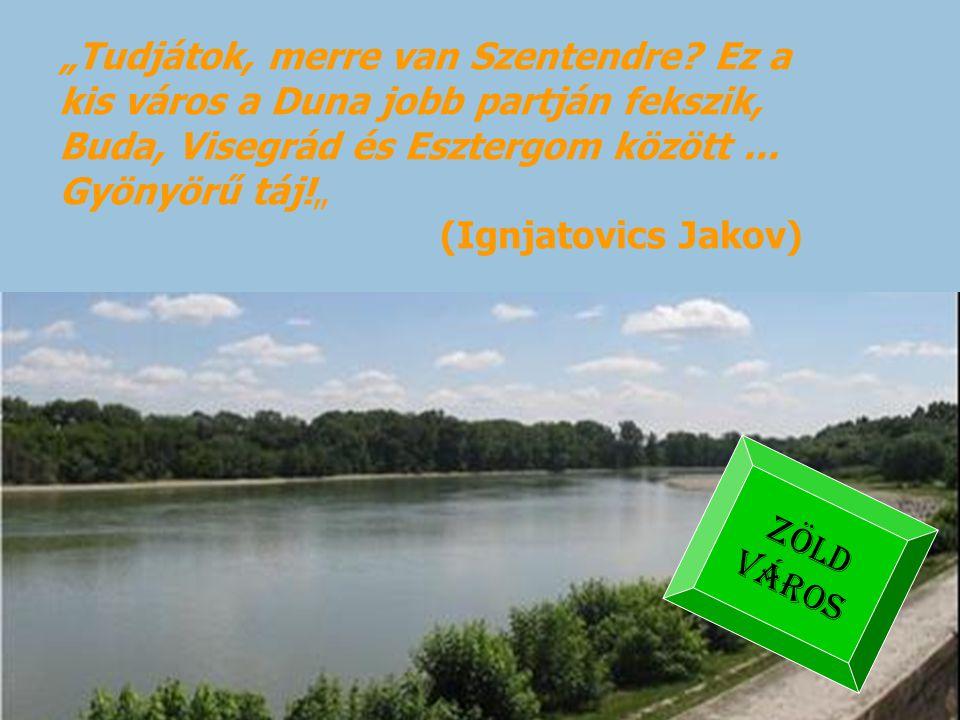 """""""Tudjátok, merre van Szentendre? Ez a kis város a Duna jobb partján fekszik, Buda, Visegrád és Esztergom között... Gyönyörű táj!"""" (Ignjatovics Jakov)"""