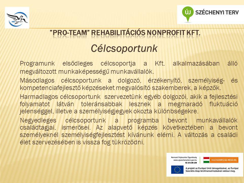 Célcsoportunk Programunk elsődleges célcsoportja a Kft.