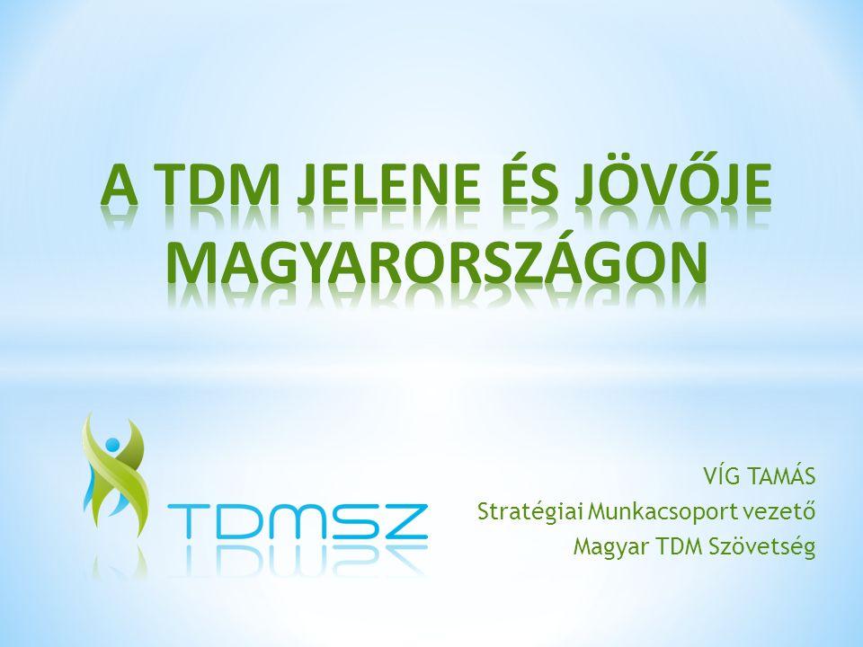 VÍG TAMÁS Stratégiai Munkacsoport vezető Magyar TDM Szövetség