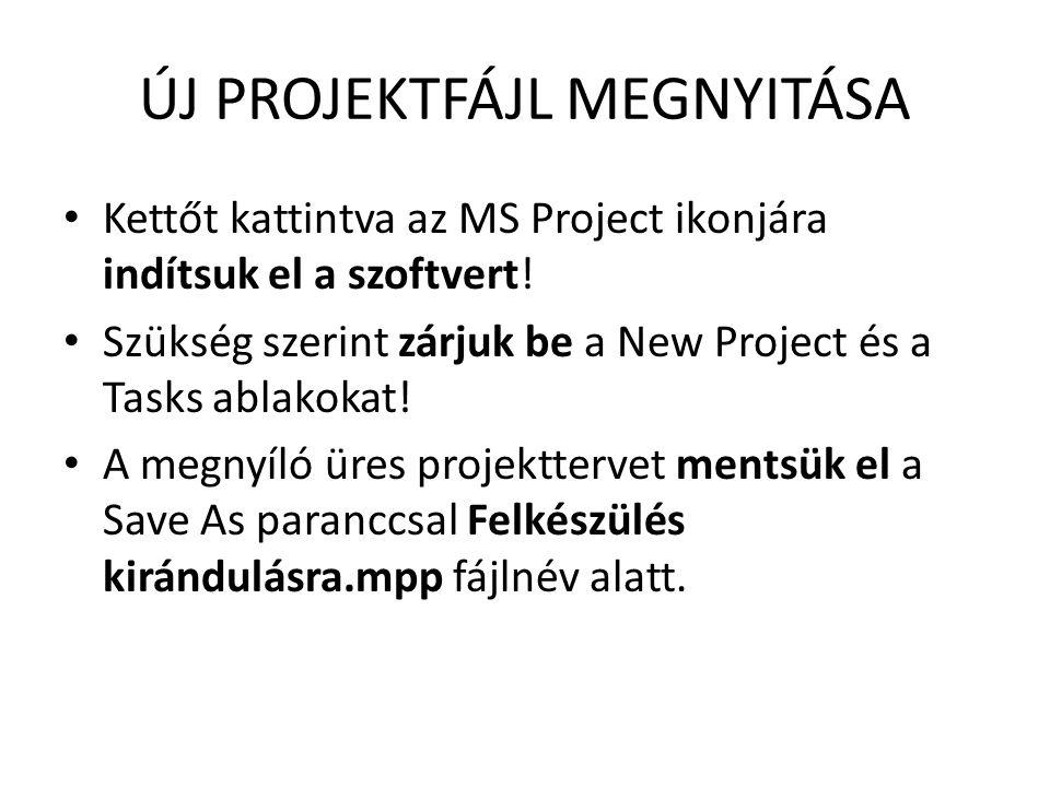 ÚJ PROJEKTFÁJL MEGNYITÁSA • Kettőt kattintva az MS Project ikonjára indítsuk el a szoftvert! • Szükség szerint zárjuk be a New Project és a Tasks abla