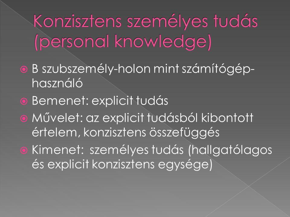  B szubszemély-holon mint számítógép- használó  Bemenet: explicit tudás  Művelet: az explicit tudásból kibontott értelem, konzisztens összefüggés 