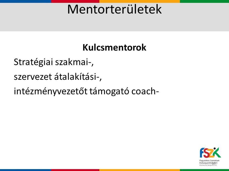 Mentorterületek Kulcsmentorok Stratégiai szakmai-, szervezet átalakítási-, intézményvezetőt támogató coach- 13