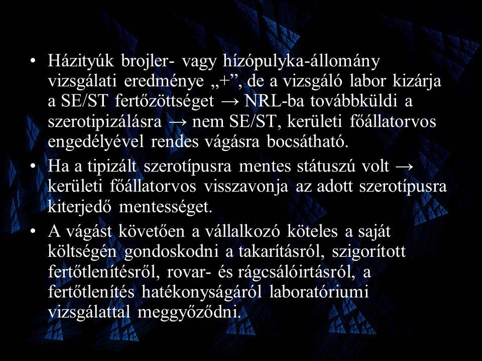 """•Házityúk brojler- vagy hízópulyka-állomány vizsgálati eredménye """"+ , de a vizsgáló labor kizárja a SE/ST fertőzöttséget → NRL-ba továbbküldi a szerotipizálásra → nem SE/ST, kerületi főállatorvos engedélyével rendes vágásra bocsátható."""