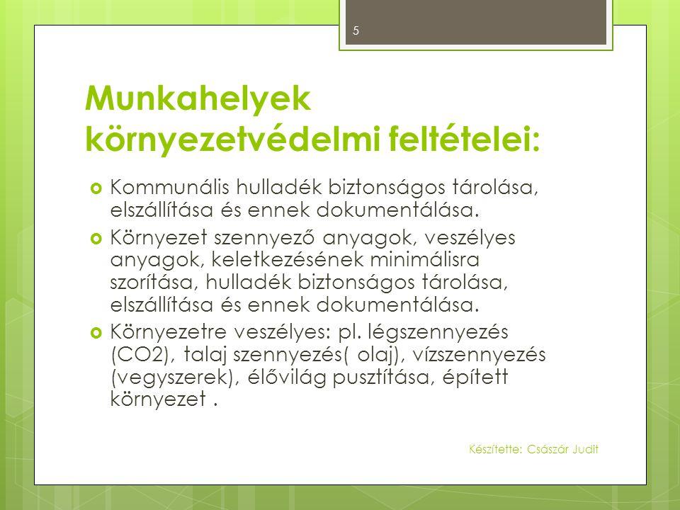 Munkahelyek környezetvédelmi feltételei:  Kommunális hulladék biztonságos tárolása, elszállítása és ennek dokumentálása.  Környezet szennyező anyago