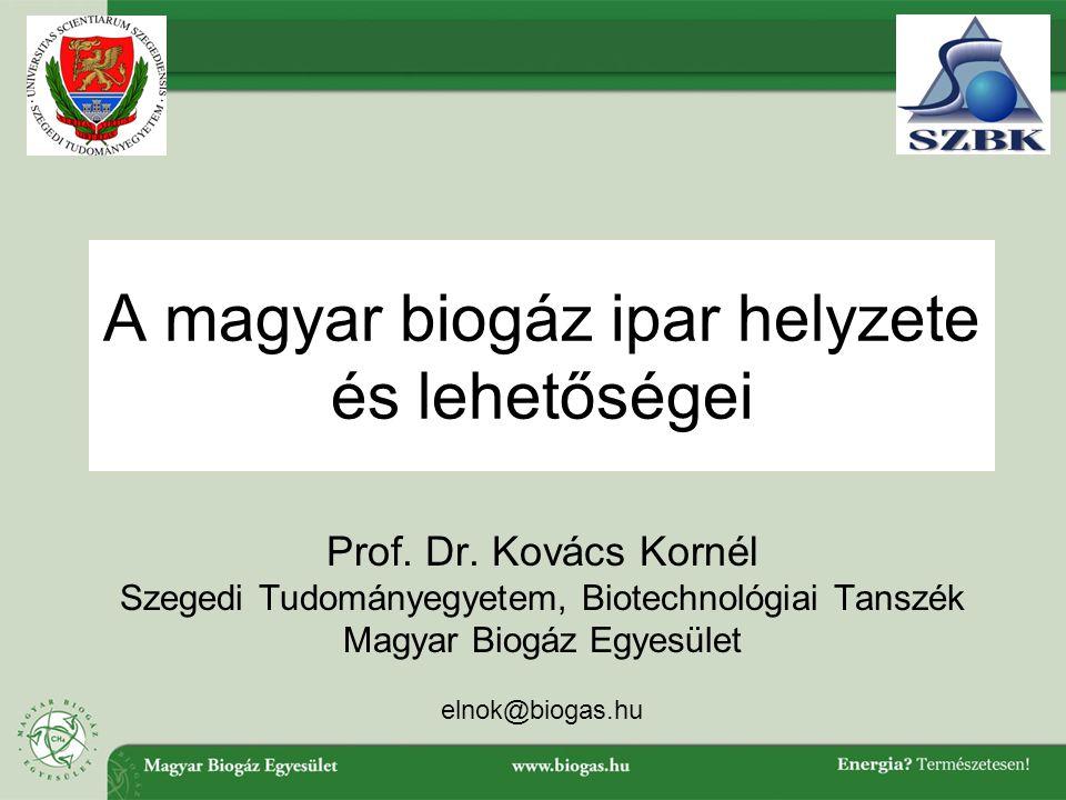 A magyar biogáz ipar helyzete és lehetőségei Prof.
