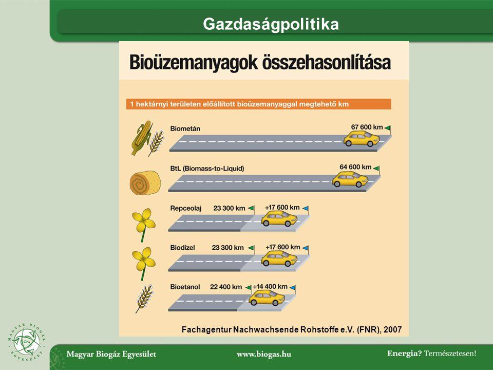 Gazdaságpolitika Fachagentur Nachwachsende Rohstoffe e.V. (FNR), 2007