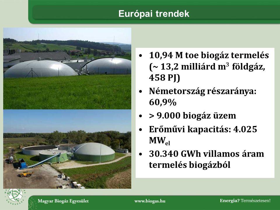 Európai trendek •10,94 M toe biogáz termelés (~ 13,2 milliárd m 3 földgáz, 458 PJ) •Németország részaránya: 60,9% •> 9.000 biogáz üzem •Erőművi kapacitás: 4.025 MW el •30.340 GWh villamos áram termelés biogázból