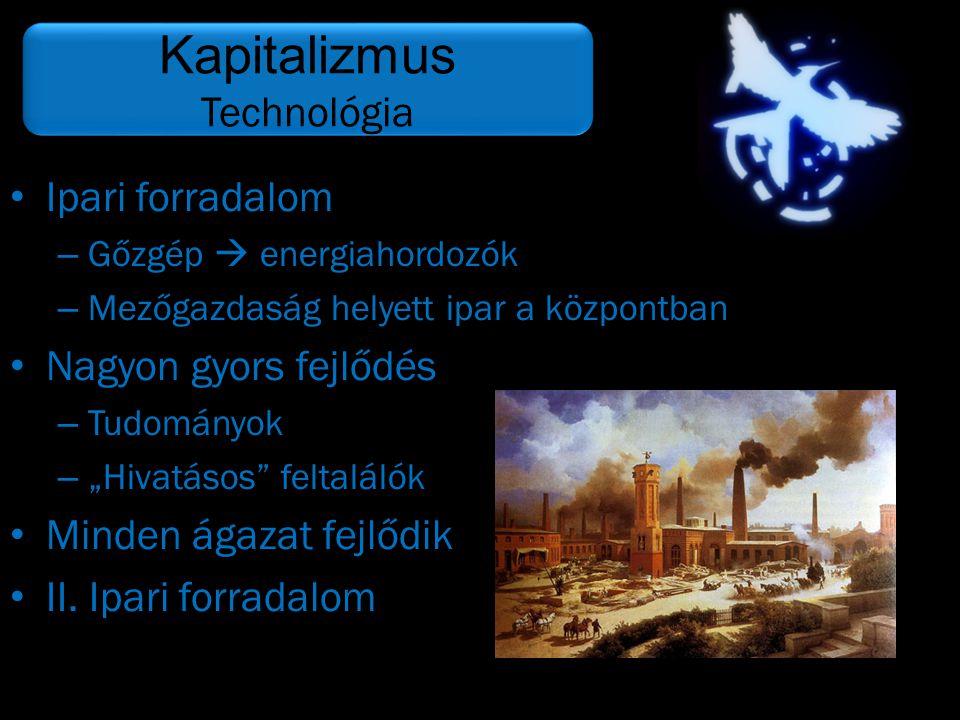 """• Ipari forradalom – Gőzgép  energiahordozók – Mezőgazdaság helyett ipar a központban • Nagyon gyors fejlődés – Tudományok – """"Hivatásos"""" feltalálók •"""