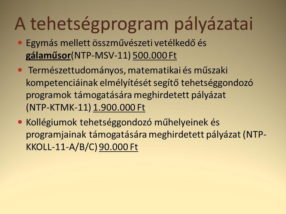 A tehetségprogram pályázatai  Egymás mellett összművészeti vetélkedő és gálaműsor(NTP-MSV-11) 500.000 Ft  Természettudományos, matematikai és műszaki kompetenciáinak elmélyítését segítő tehetséggondozó programok támogatására meghirdetett pályázat (NTP-KTMK-11) 1.900.000 Ft  Kollégiumok tehetséggondozó műhelyeinek és programjainak támogatására meghirdetett pályázat (NTP- KKOLL-11-A/B/C) 90.000 Ft