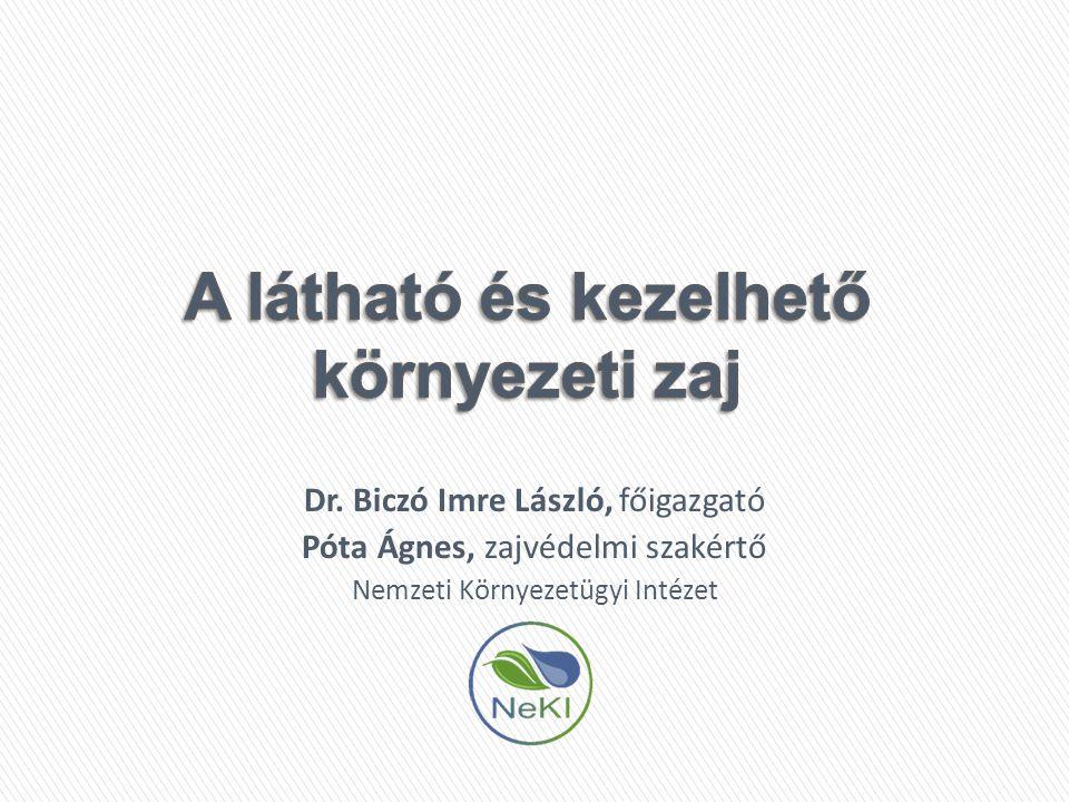 Dr. Biczó Imre László, főigazgató Póta Ágnes, zajvédelmi szakértő Nemzeti Környezetügyi Intézet