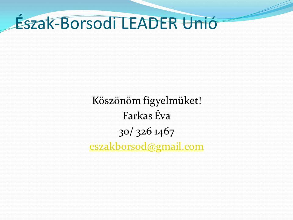 Észak-Borsodi LEADER Unió Köszönöm figyelmüket! Farkas Éva 30/ 326 1467 eszakborsod@gmail.com