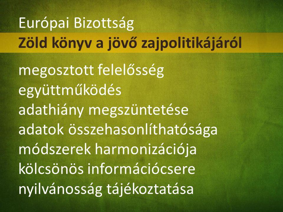 Európai Bizottság Zöld könyv a jövő zajpolitikájáról megosztott felelősség együttműködés adathiány megszüntetése adatok összehasonlíthatósága módszere