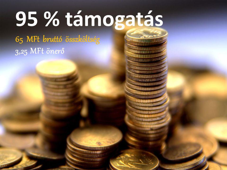 95 % támogatás 65 MFt bruttó összköltség 3,25 MFt önerő