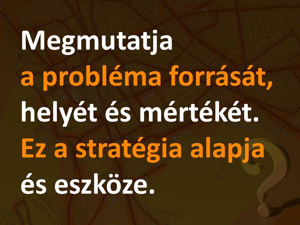 Megmutatja a probléma forrását, helyét és mértékét. Ez a stratégia alapja és eszköze.
