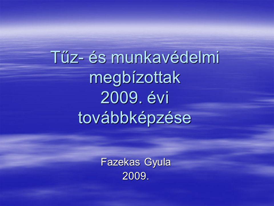 Tűz- és munkavédelmi megbízottak 2009. évi továbbképzése Fazekas Gyula 2009.