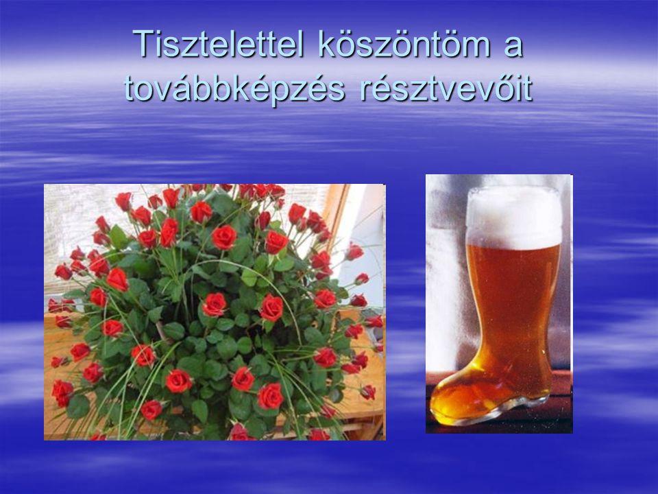 Tűz-és munkavédelmi megbízottak továbbképzése Magyar Köztársaság Egészségügyi Minisztériuma Országos Tisztifőorvosi Hivatal Nemzeti Influenza Pandémiás Terv Intézkedési terv új vírus variáns által okozott influenza világjárvány esetére 2005.