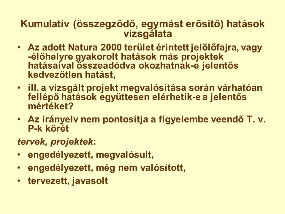 Kumulatív (összegződő, egymást erősítő) hatások vizsgálata •Az adott Natura 2000 terület érintett jelölőfajra, vagy -élőhelyre gyakorolt hatások más projektek hatásaival összeadódva okozhatnak-e jelentős kedvezőtlen hatást, •ill.