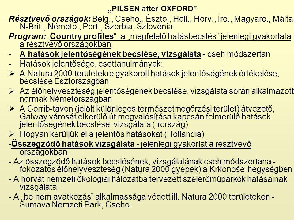 """""""PILSEN after OXFORD"""" Résztvevő országok: Belg., Cseho., Észto., Holl., Horv., Íro., Magyaro., Málta, N-Brit., Németo., Port., Szerbia, Szlovénia Prog"""