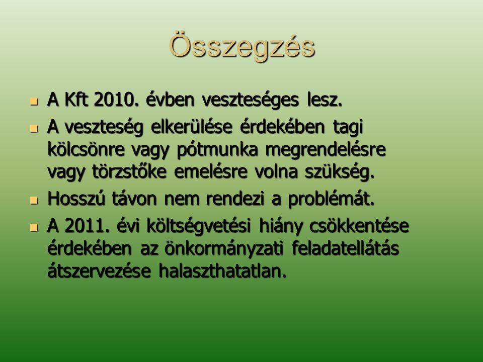 Összegzés  A Kft 2010. évben veszteséges lesz.