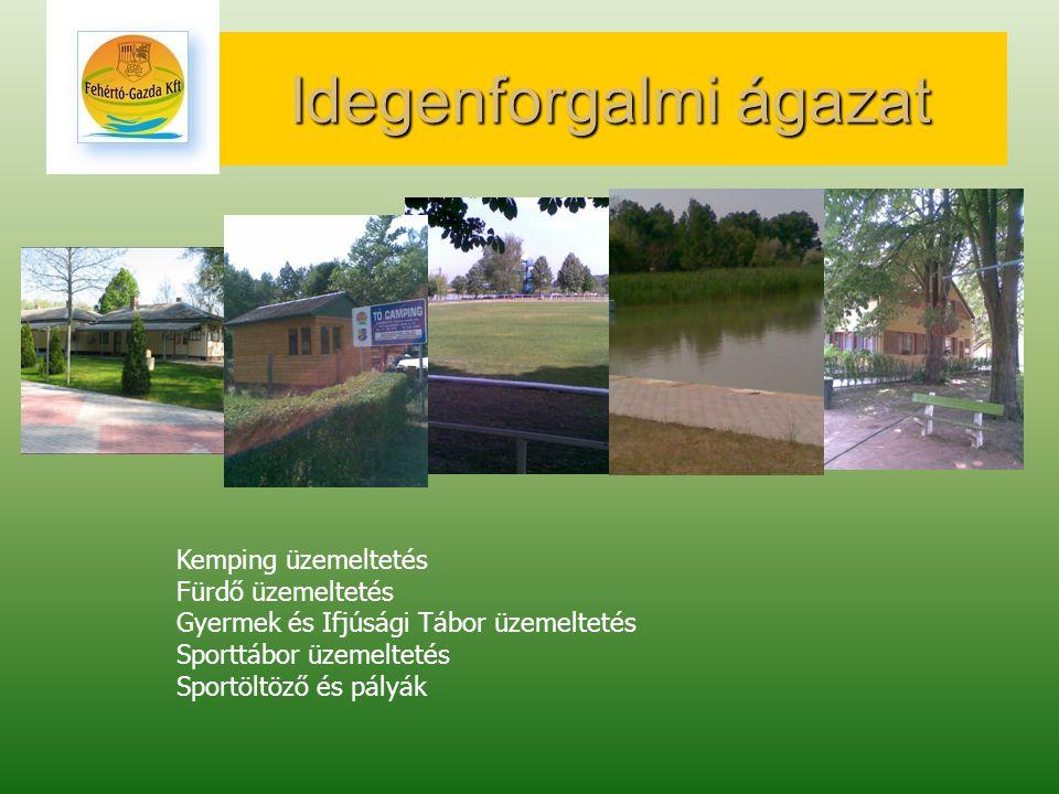 Idegenforgalmi ágazat Kemping üzemeltetés Fürdő üzemeltetés Gyermek és Ifjúsági Tábor üzemeltetés Sporttábor üzemeltetés Sportöltöző és pályák