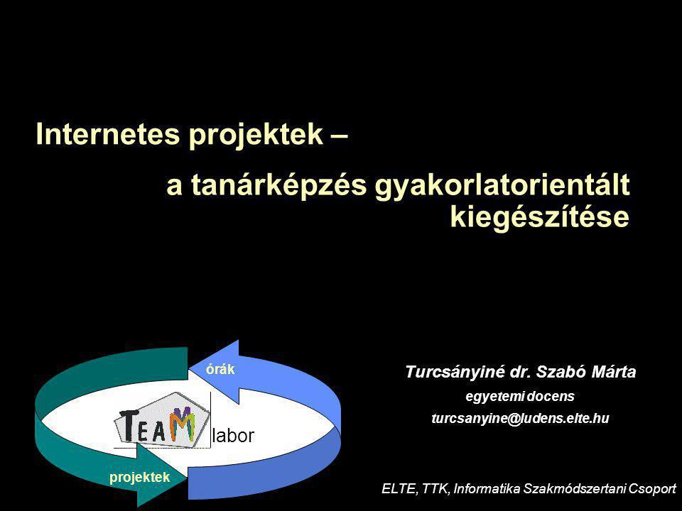 11121234567 89101112123456789 MINERVA 200220032004 DefiníciókKísérletek, értékelésKollaboratóriumok fejlesztéseTerjesztés ELTE, TeaM Labor (koordinátor) Comenius Univ.