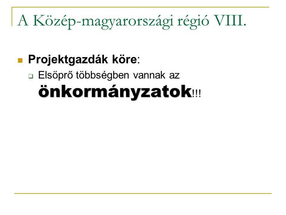 A Közép-magyarországi régió VIII.