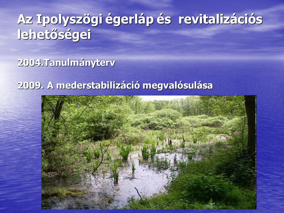 Az Ipolyszögi égerláp és revitalizációs lehetőségei 2004.Tanulmányterv 2009. A mederstabilizáció megvalósulása