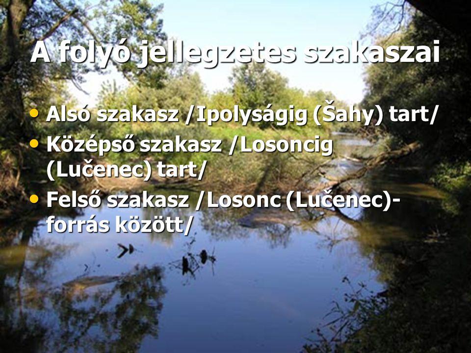 A folyó jellegzetes szakaszai • Alsó szakasz /Ipolyságig (Šahy) tart/ • Középső szakasz /Losoncig (Lučenec) tart/ • Felső szakasz /Losonc (Lučenec)- f