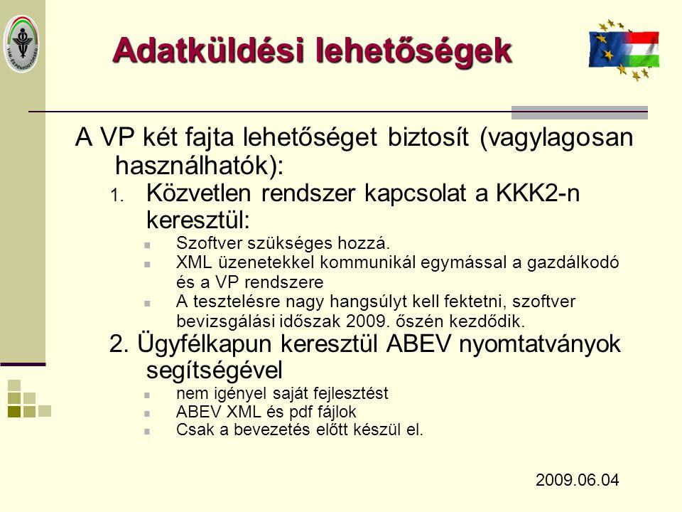 Tesztelés  Várható ideje: 2009.